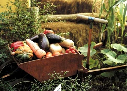 Agroecologia_Agronegocio_y_Crisis_alimentaria._Dialogo_con_Miguel_Altieri_y_Marc_Dufumier