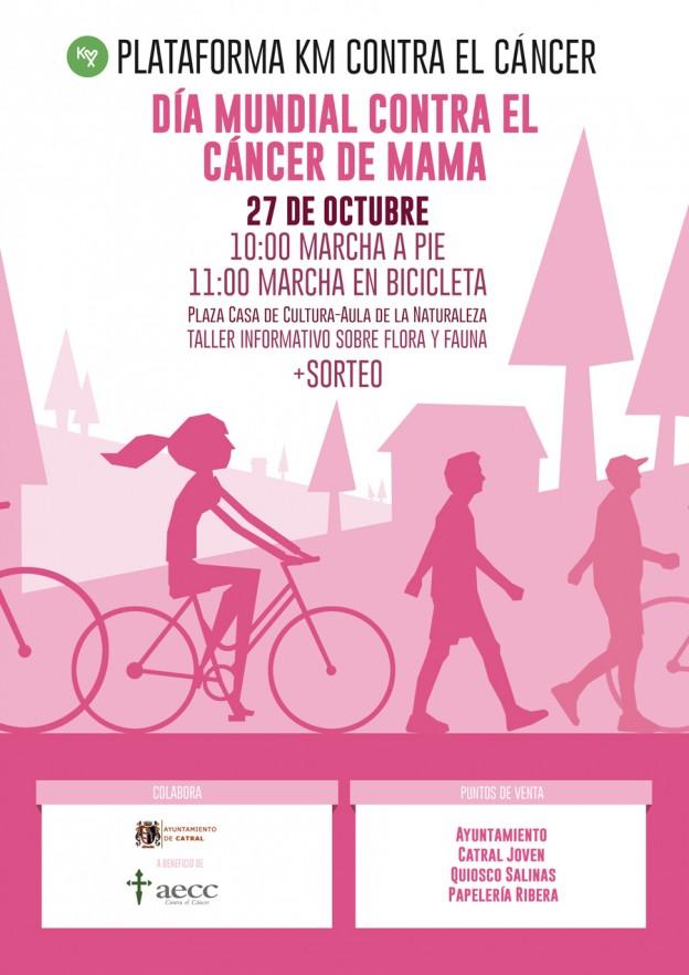 marcha_contra_el_cancer_27102013